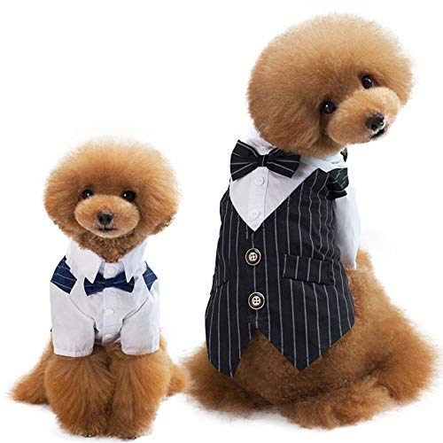 Dora Bridal Dog Shirt Puppy Pet Small Dog Clothes, Stylish Suit Bow Tie Costume, Wedding Shirt Formal Tuxedo with Black Tie, Dog Prince Wedding Bow Tie Suit Small Dog Teddy ()
