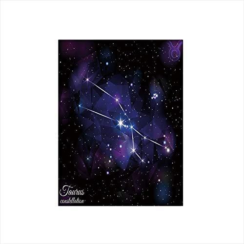 - Decorative Privacy Window Film/Zodiac Constellation Star Cluster on Space Galaxy Cosmic Mystic Artsy Design/No-Glue Self Static Cling for Home Bedroom Bathroom Kitchen Office Decor Indigo Dark Purple