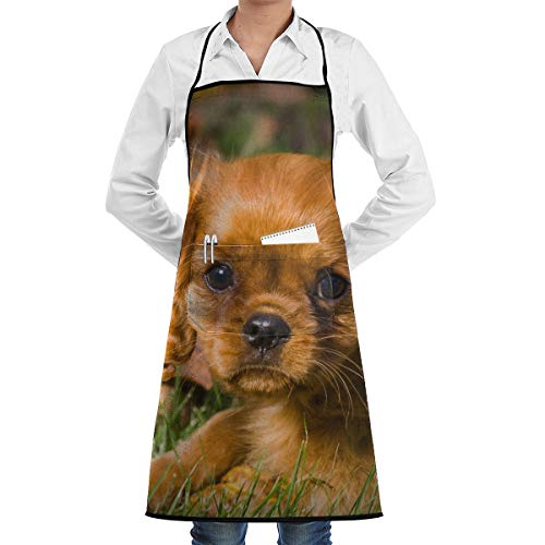 Spaniel Bbq Apron - Vicrunning Cavalier Charles Spaniel Aprons Bib for Mens Womens BBQ Lace Adjustable Adult Kitchen Waiter Aprons with Pockets