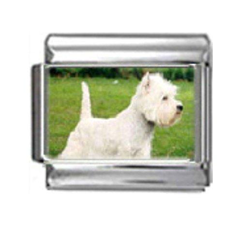 Stylysh Charms WEST Highland White Terrier Dog Photo Italian 9mm Link DG393