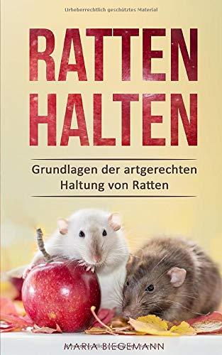 Ratten Halten  Grundlagen Der Artgerechten Haltung Von Ratten