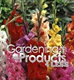 100 Bulbs Mixed Gladiolus Bulbs From GardeningProducts4Less! Queen of Summer Blooms, Easy to Grow in Your Own Home, Fragant Too! Assortment of Colors Such As Red, Orange, Yellow, Pink and White. Fast Fun Easy Growing! Perfect for Decorating Your Garden, P