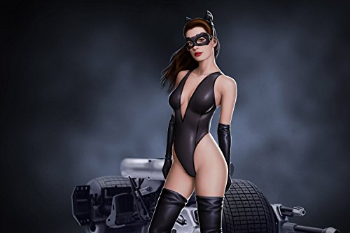 Batman The Dark Knight Catwoman Hot Anne Hathaway Poster 24x