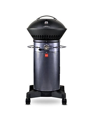 (Ship from USA) Fuego Element 2016 F21C GAS GRILL, Stable...