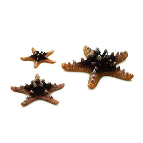 biOrb 46137.0 Starfish Set 3 Natural Aquariums by biOrb