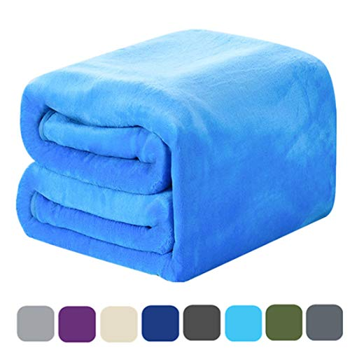 DREAMFLYLIFE Luxury Fleece Blanket Summer Thick Blanket Super Soft Blanket Bed Warm Blanket Couch Blanket for All Season Sky Blue Queen-Size, 90x90 in