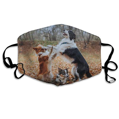 (Whages Frontier Shepherd Dog Fighting Washable Reusable Safety Breathable Mask, 4.3