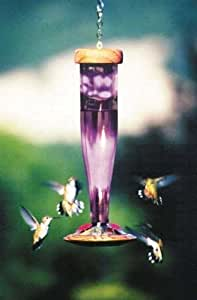Schrodt Designs Model HBL-A Amethyst Hummingbird Feeder Outdoor, Home, Garden, Supply, Maintenance