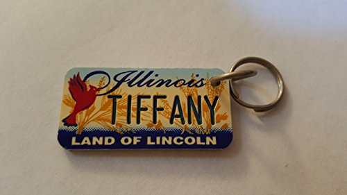Illinois Land of Lincoln Tiffany Keychain Key Holder Key - Keys Tiffanys