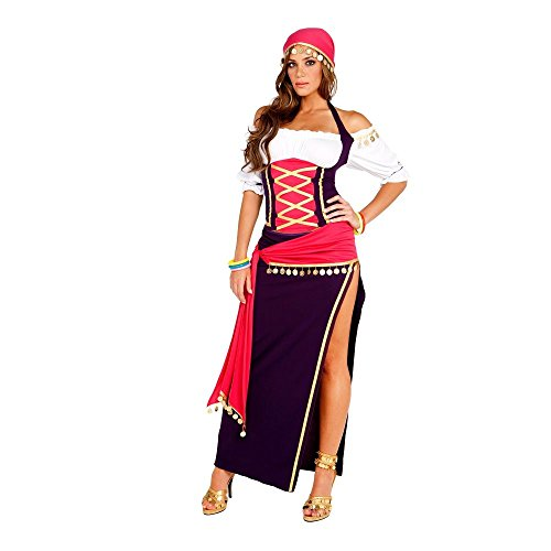 Womens Fortune Teller Costumes - Gypsy Maiden Adult Costume - Large