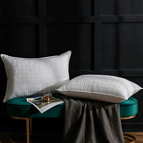 Ventidora Down Alternative Pillow(2-Pack),100% Egyptian Cotton Hypoallergenic Pillow for Sleeping Plush Gel Fiber Pillow Queen-20x28Inches.
