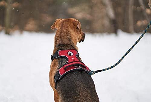 Canadian Arnés para Perros, arnés de Mesa para Perros, arnés para ...