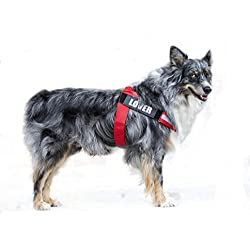 Reflective Big Dog Harness Adjustable with Handle Outdoor Vest for Large Breed Dogs with Removable Patches for Climbing, Walking& Hiking PUPTECK Red Medium