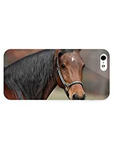 3d Full Wrap Case for iPhone 5/5s Animal Horse73