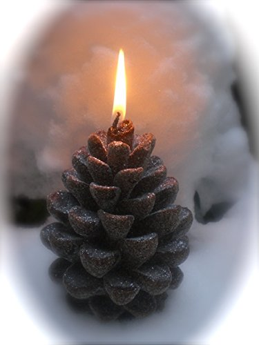 Pinecone Four Light - Home Comforts LAMINATED POSTER Candlelight Pine Pine Cones Candle Poster 24x16 Adhesive Decal