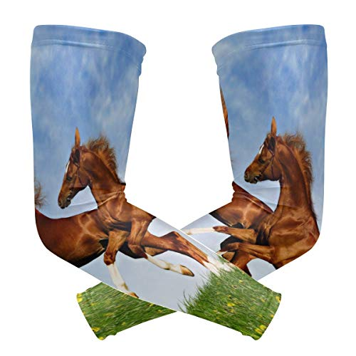 FANTAZIO Arm Sleeve Elbow Sleeves Two Horses Frolic On The Plain UV Sun Protection Cooling Arm Elbow ()
