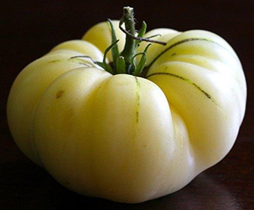 White Wonder Tomato 25 Seeds - Great Taste - Heirloom