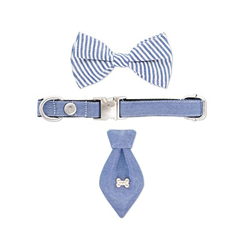 (United Pups Fashion Collar with Matching Bow Tie and Neck Tie Set for Dogs (Chill Pups Blue, Small))