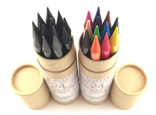 Ashleigh Nicole Arts 12 Woodless Colored Pencils Plus Graphite and Charcoal Sketching Set-24 Piece