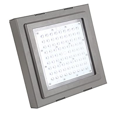 Hykolity LED Canopy Light Commerical Grade Dimmable Weatherproof High Bay Balcony Carport Driveway Ceiling Light