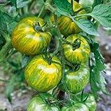 David's Garden Seeds Tomato Slicing Green Zebra SL2276 (Green) 50 Non-GMO, Organic, Heirloom Seeds
