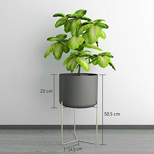 CSQ Indoor Plant Stand, Creative Iron Art Flower Pot Frame Large Floor Place Living Room Bedroom Study Office Waterproof Antirust (Color : Black) by Flowers and friends (Image #1)