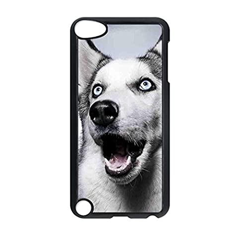 Pc Have With Siberian Husky For Ipod Touch 5 For Man Phone Shells Obvious (One Direction Ipod 5 Custom Case)