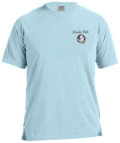 NCAA Florida State Seminoles Women's The South Short Sleeve Comfort Color Tee, XX-Large, Chambray