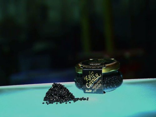 Kelp Caviar, Luxury Sailboats, Dental Crowns, High-Performance - Crown Caviar