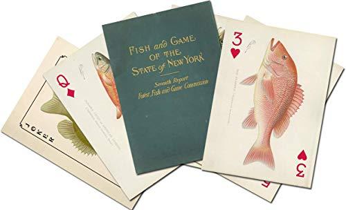SF Denton Game Fish of New York Art Card Deck (New And Game York Fish)
