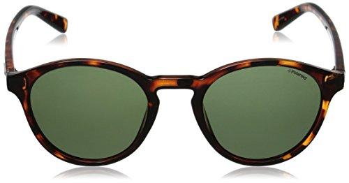 sol de PLD Marrón hombre S 1013 Green Gafas Pz Polaroid para Havana Redondas Ew56zq