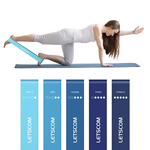 LETSCOM Resistance Loop Bands, Exercise Fitness Resistance Bands, Mini Workout Bands for Butt Legs Glutes Booty Building Strength Training and Physical Therapy, Carry Bag