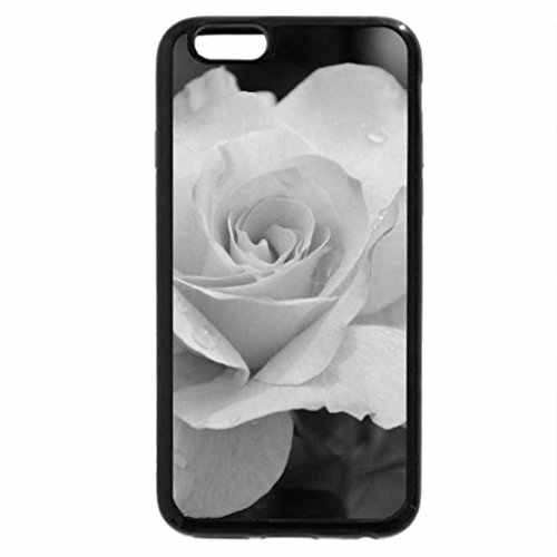 iPhone 6S Plus Case, iPhone 6 Plus Case (Black & White) - Pink rose