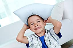 TODDLER PILLOW (13x18) in White & Prints - No Pillowcase Needed - Hypoallergenic - Machine Washable - Double Stitched - Made in Virginia - Sold ONLY by A Little Pillow Company (White)