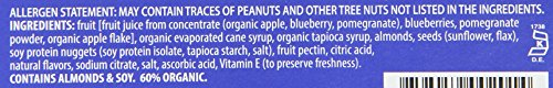 Orchard Bars Fruit and Nut Bar, Blueberry Pomegranate Almond, 1.4 Ounce (Pack of 12) by Orchard Bars (Image #2)