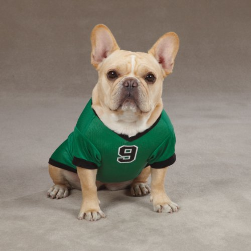Casual Canine Polyester Game Day Dog Jersey, X-Large, 24-Inch, Shamrock Green