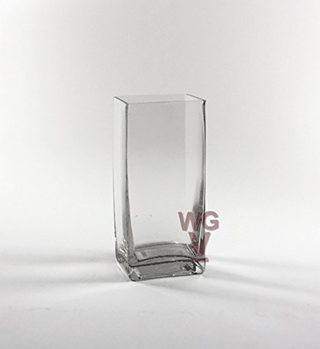 WGV Clear Rectangle Block Glass Vase, 3 by 4 by 9-Inch