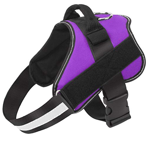 Bolux Harness Reflective Breathable Adjustable product image