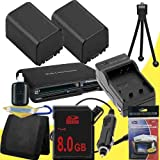 TWO NP-FV100 Lithium Ion Replacement Batteries w/Charger + 8GB SDHC Memory Card + Memory Card Reader/Wallet + Deluxe Starter Kit for Sony NEXVG10, NEXVG20 Interchangeable Lens HD Handycam Camcorder DavisMAX Accessory Bundle