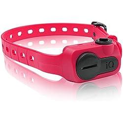 Dogtra iQ No Bark Collar, Pink