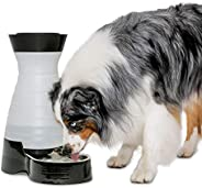 PetSafe Healthy Pet Water Station, Gravity Dog and Cat Water System with Stainless Steel Bowl, Large, 320 oz.