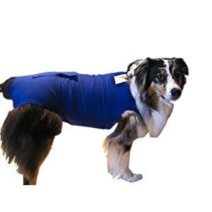 Surgi Snuggly Blue Medium - Doggie Diaper Keeper - Washable - Fits All Sizes