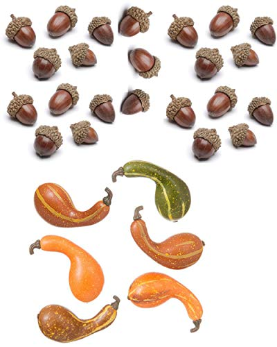 Fall Harvest Decorations Mini Gourds and Acorns Table Scatter Vase Filler Autumn Decor (2 Pack) by Autumn Tabletop Decor