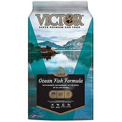 Victor Select - Ocean Fish Formula, Dry Dog Food