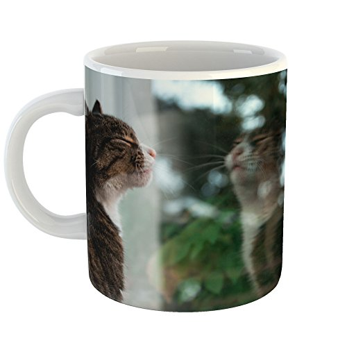 Westlake Art - Cat Domestic - 11oz Coffee Cup Mug - Modern Picture Photography Artwork Home Office Birthday Gift - 11 Ounce (Am Domestic Cleaner)