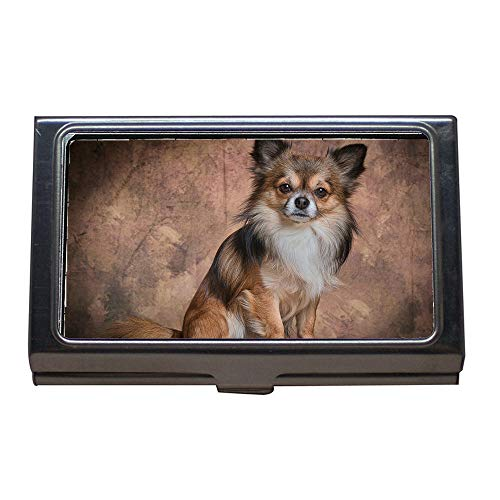Business Card Holder,Chihuahua Mammal Dog Animal Cute Fur Small,Business Card Case Stainless Steel