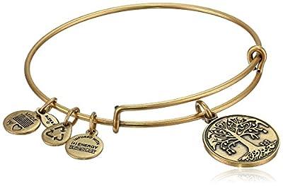 Alex and Ani Women's Tree of Life Charm Bangle Rafaelian Bangle Bracelet One Size