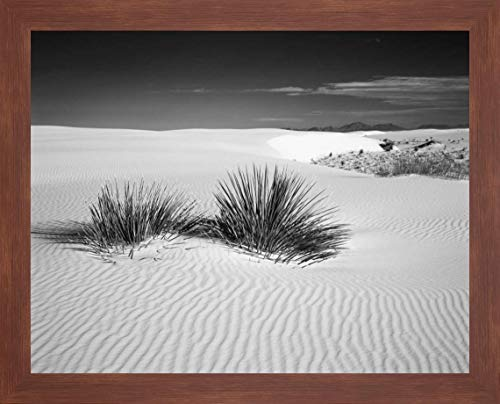 (New Mexico, White Sands NM Bush in Desert Sand by Dennis Flaherty - 23