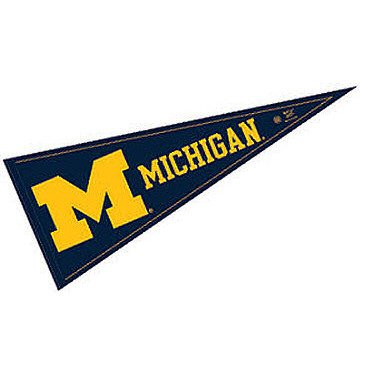 WinCraft Michigan Wolverines Pennant and 12