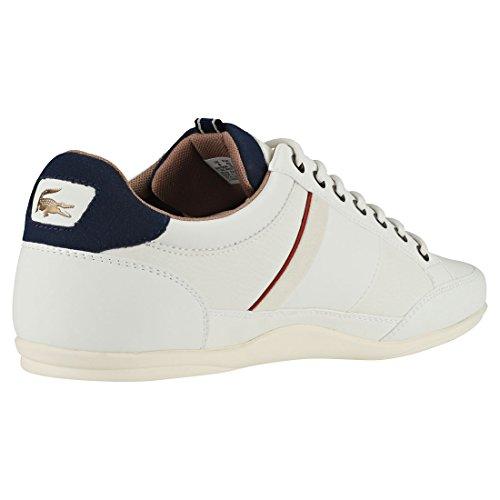 118 001 2 Chaymon Mehrfarbig Homme Lacoste Noir white Baskets Cam0012wn1 gz5qnqw1p